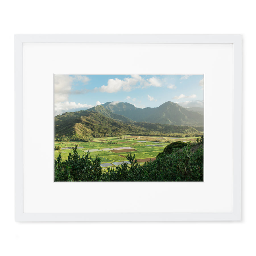 hawaii fine art framed prints for sale.