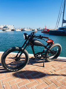 MAY DELIVERY - Cooler King 750w eBike - 48v, Retro Style Electric Bike