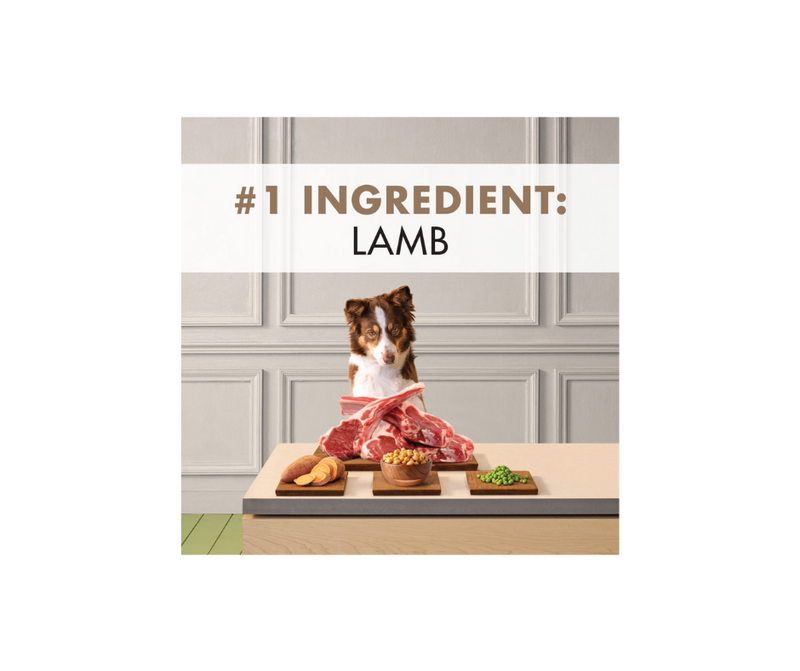 Canidae Grain Free PURE - All Breeds, Adult Dog. Real Lamb Limited Ingredient Recipe - Southern Agriculture