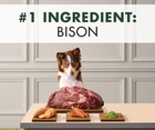 Canidae Grain Free PURE - All Breeds, Adult Dog. Real Bison Limited Ingredient Recipe - Southern Agriculture