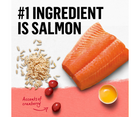 Purina Beyond - All Breeds, Adult Cat. Salmon & Whole Brown Rice Recipe - Southern Agriculture