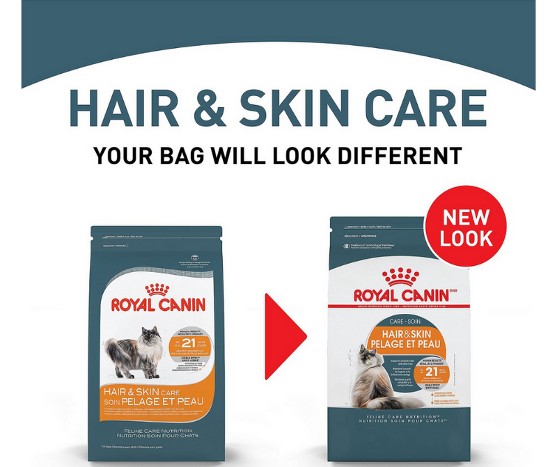 Royal Canin Hair & Skin Care - All Breeds, Adult Cat. Dry Cat Food - Southern Agriculture