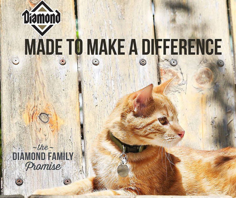Diamond - Active Breed, Adult Cat. Maintenance Formula - Southern Agriculture