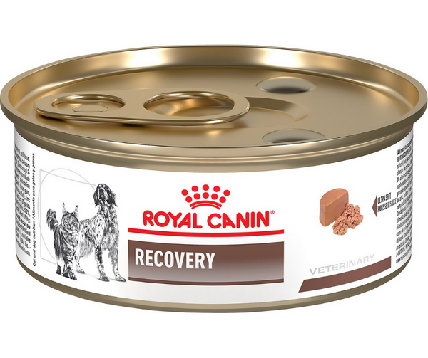 Royal Canin, Veterinary Diet - Recovery, RS. - Southern Agriculture