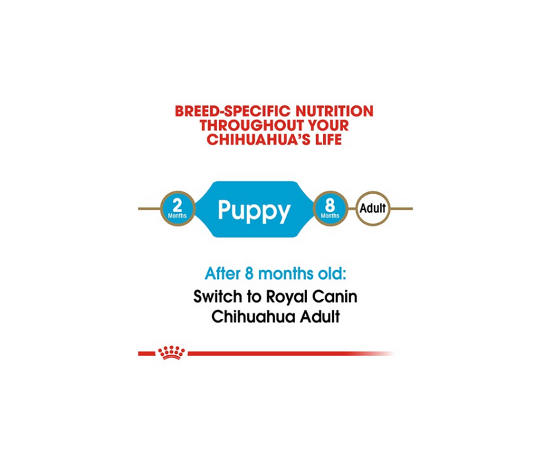 Royal Canin - Chihuahua Puppy. Dry Dog Food - Southern Agriculture
