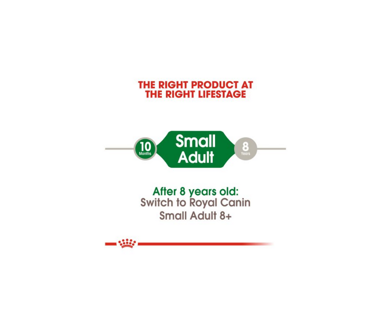 Royal Canin - Small Breed, Adult Dog. Dry Dog Food - Southern Agriculture