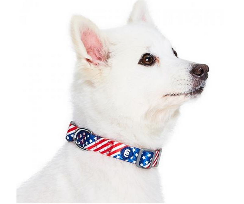 American Flag Dog Collar by Blueberry Pet - Southern Agriculture