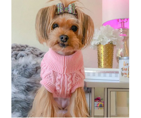 Pink Cable Knit Sweater for Dogs
