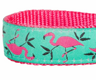 Pink Flamingo Zoo Fun Dog Collar by BlueBerry Pet - Southern Agriculture