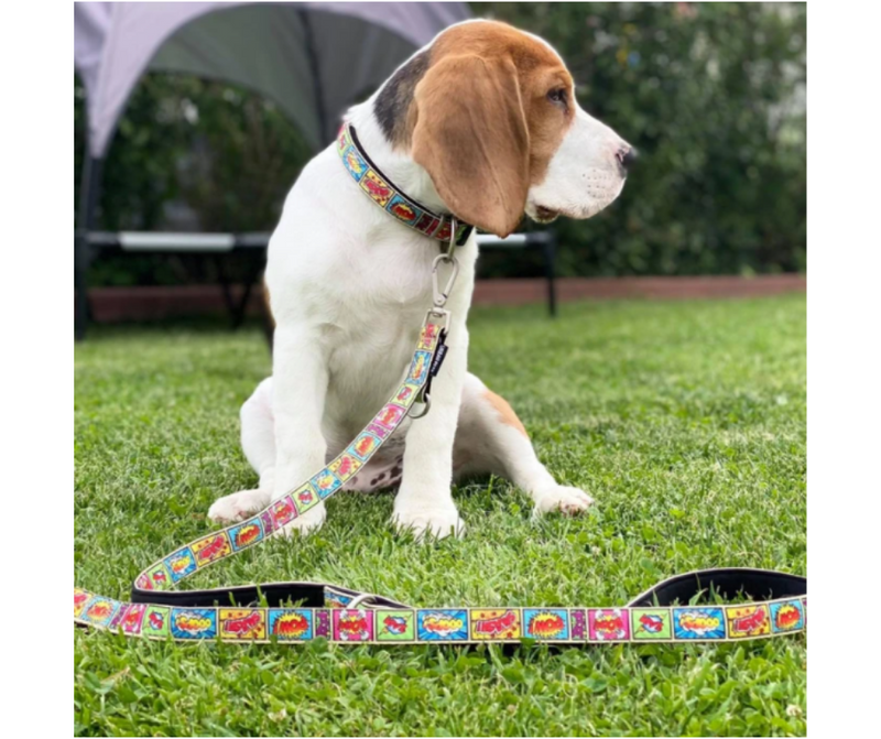 Max and Molly Smart ID Comic Adjustable Dog Collar
