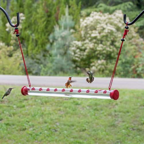 Perky Pet Hummerbar Hummingbird Feeder