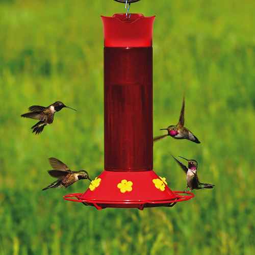 Perky Pet Our Best Humming Bird Container