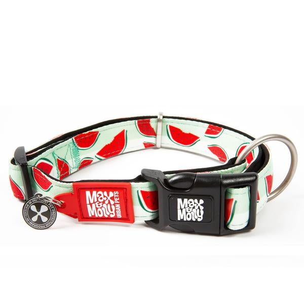 Max and Molly Smart ID Watermelon Collar - Southern Agriculture