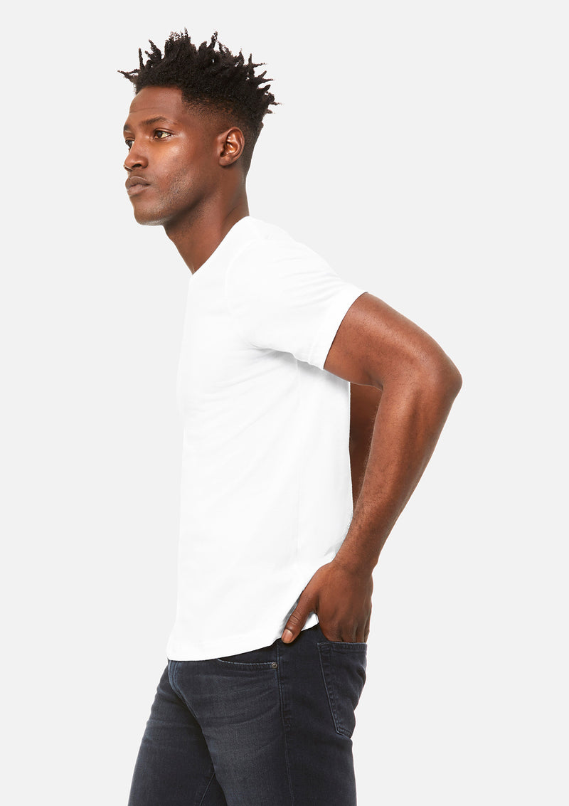 mens triblend crew tee white bundle