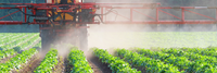Beware Illegal Pesticides Available Online