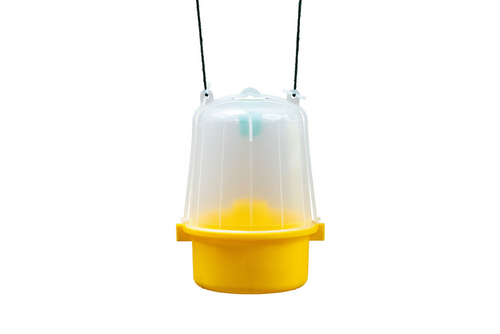 Wasp Trap With Attractant