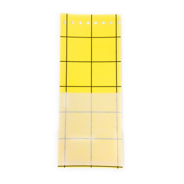 Large Yellow Eco Sticky Traps