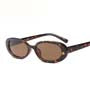 Megan Shades in Tortoiseshell