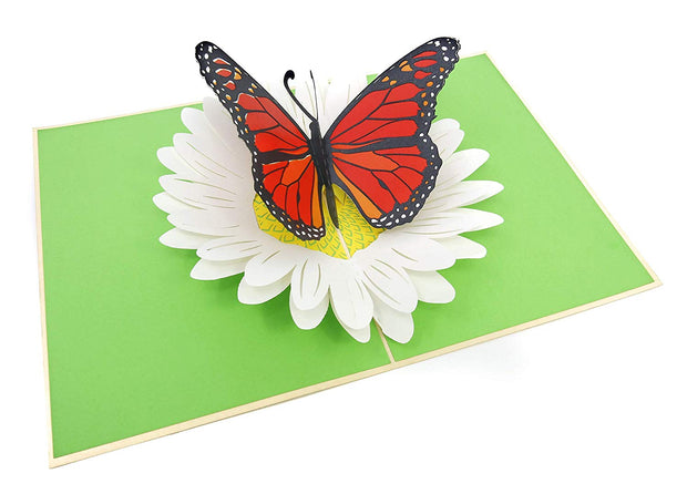 PopLife Pop-up card features orange butterfly on a white petal