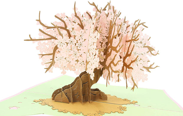 Features Sakura Tree Pop-Up