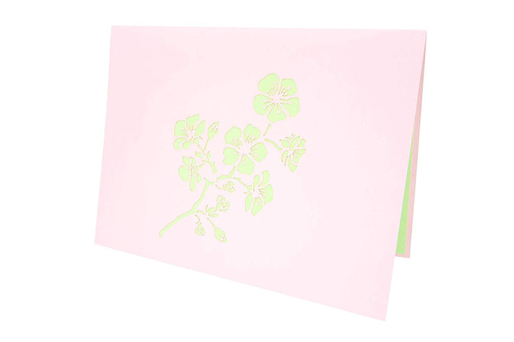 Front cover of card with pink color features cherry blossom flower
