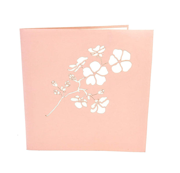 Front cover of card with pink color features Sakura flower