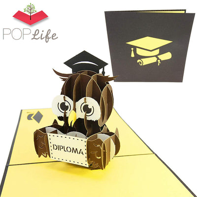 Graduation Diploma Owl Pop Up Card