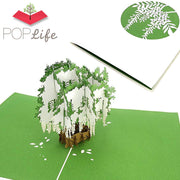 White Wisteria Blossom Tree Pop Up Card