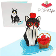 Playful Cat Pop Up Card