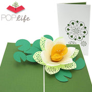 Lotus Blossom Mothers Day Pop Up Card