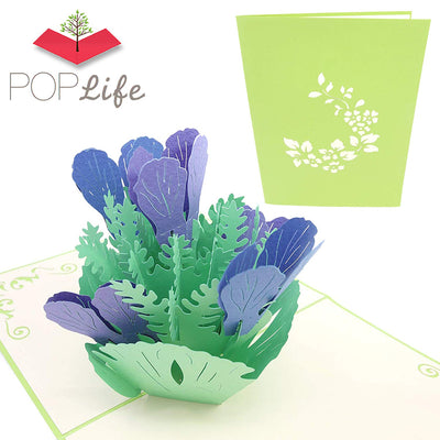 PopLife Iris Flower Bouquet Pop Up Card