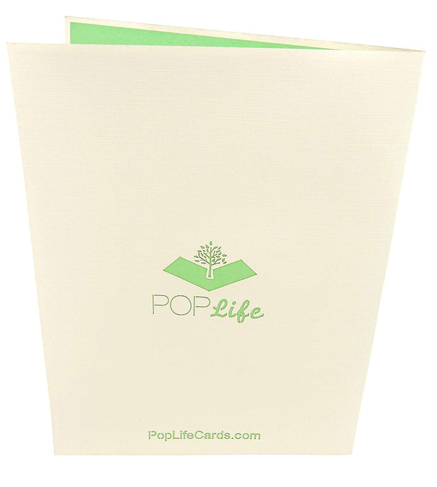 Back cover of card with beige color and printed PopLife logo