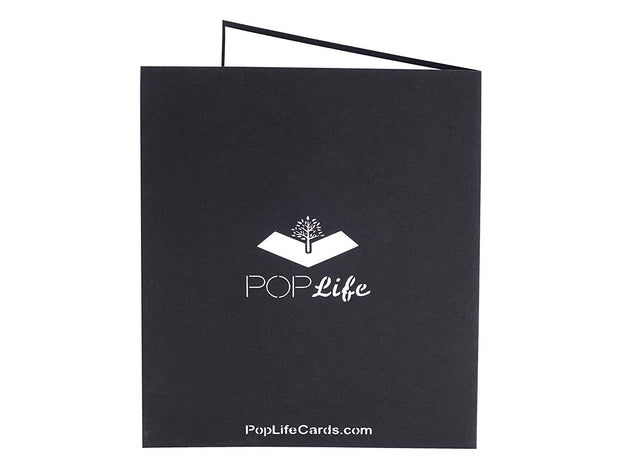 Back cover of card with black color and printed PopLife logo