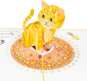 Funny Kitten Pop Up Card