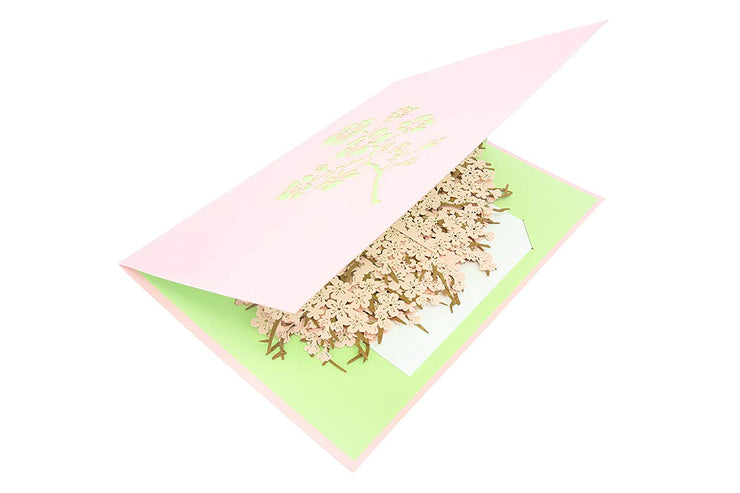 Cherry Blossom Pop Up Card