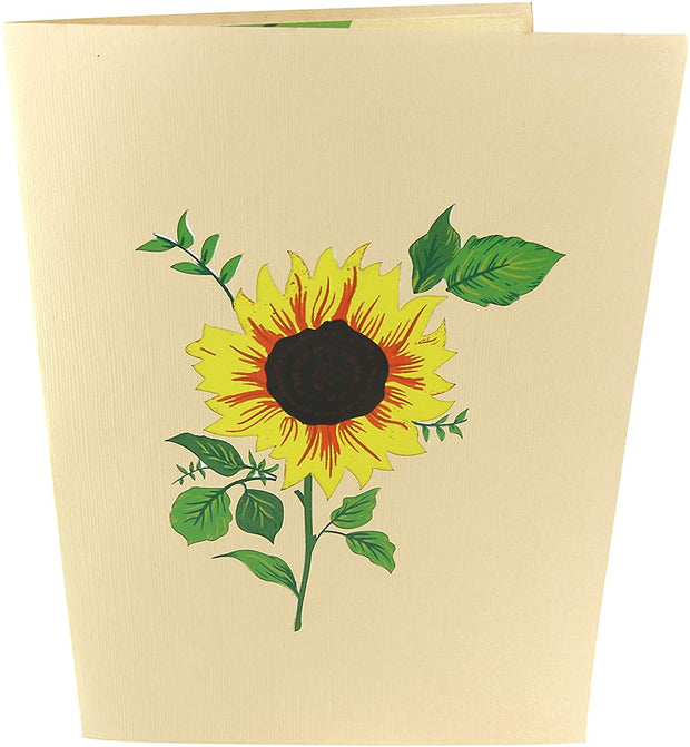 Front cover of card with light brown color features sunflower plant