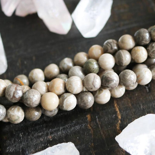 fossil coral jasper, 8mm, round, glossy, 1 strand, 16 inches, approx. 48 beads.-Gemstone Beads-BeadsVenture