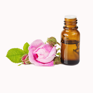 Rose Flower Oil