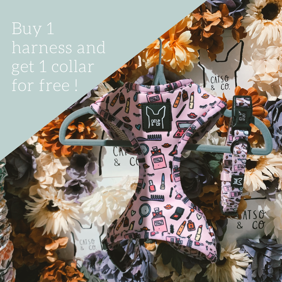 PINK - buy 1 harness and get 1 collar for free - BLACKFRIDAY