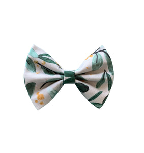 Colour of the wind - reverse side 💨 - Bow tie