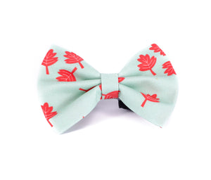 Kawaii squash goal 🍁  - reverse side - Bow tie (NEW)