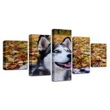 Animal Husky Pet Blue Eyes Dog - Mystikz Gaming