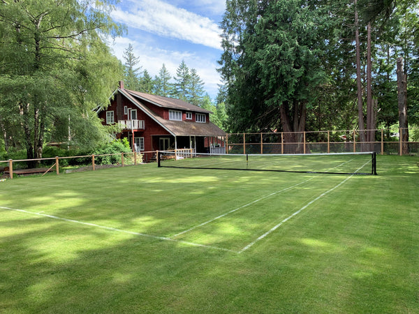 Grass court tennis lawn seed