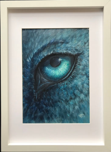 Study of Blue Wolf Eye