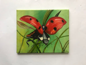 Flight of the Ladybird