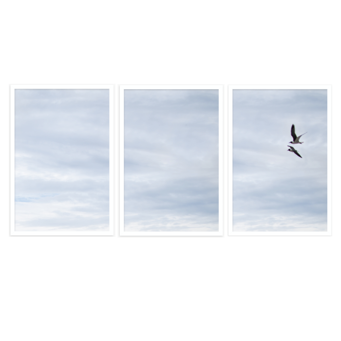 FLY AWAY WITH ME - TRIPTYCH