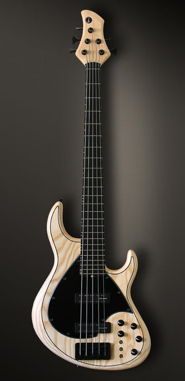 Meridian J 24 - 5 Strings