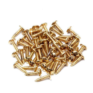 BassGears 50Pcs Guitar Bass Pickguard Mounting Screws