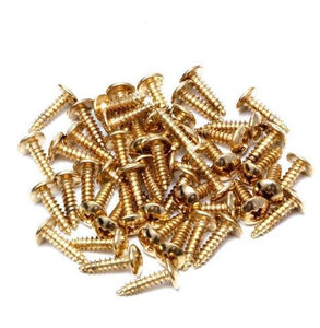 BassGears Or 50Pcs Guitar Bass Pickguard Mounting Screws