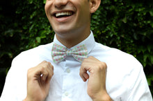 Load image into Gallery viewer, Water Color Jockey Silk Bow Tie